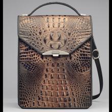 bronze crocodile leather case