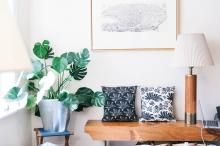 plant print on pillows